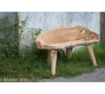 Banc Racine Urban Jungle en teck