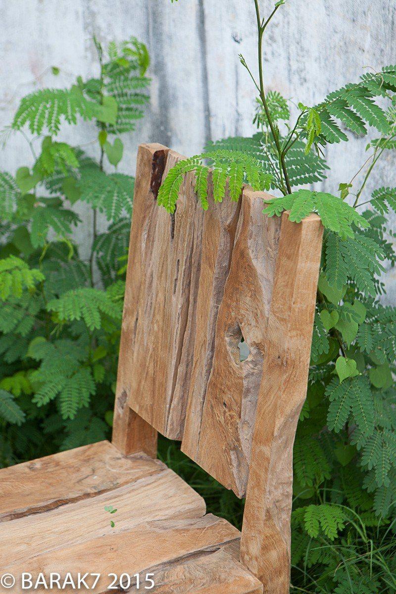 Urban jungle chair JANE in teak wood - 2