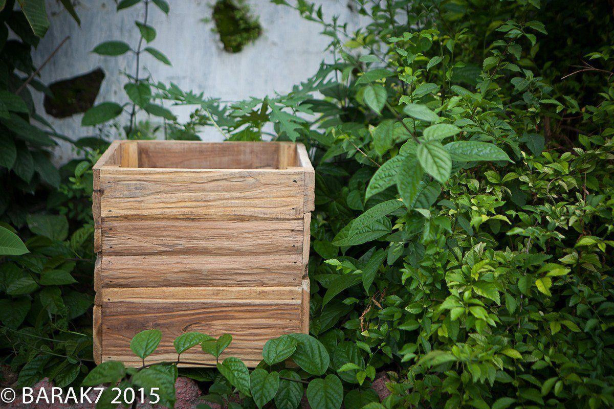 Urban jungle flower pot in teck wood - 1