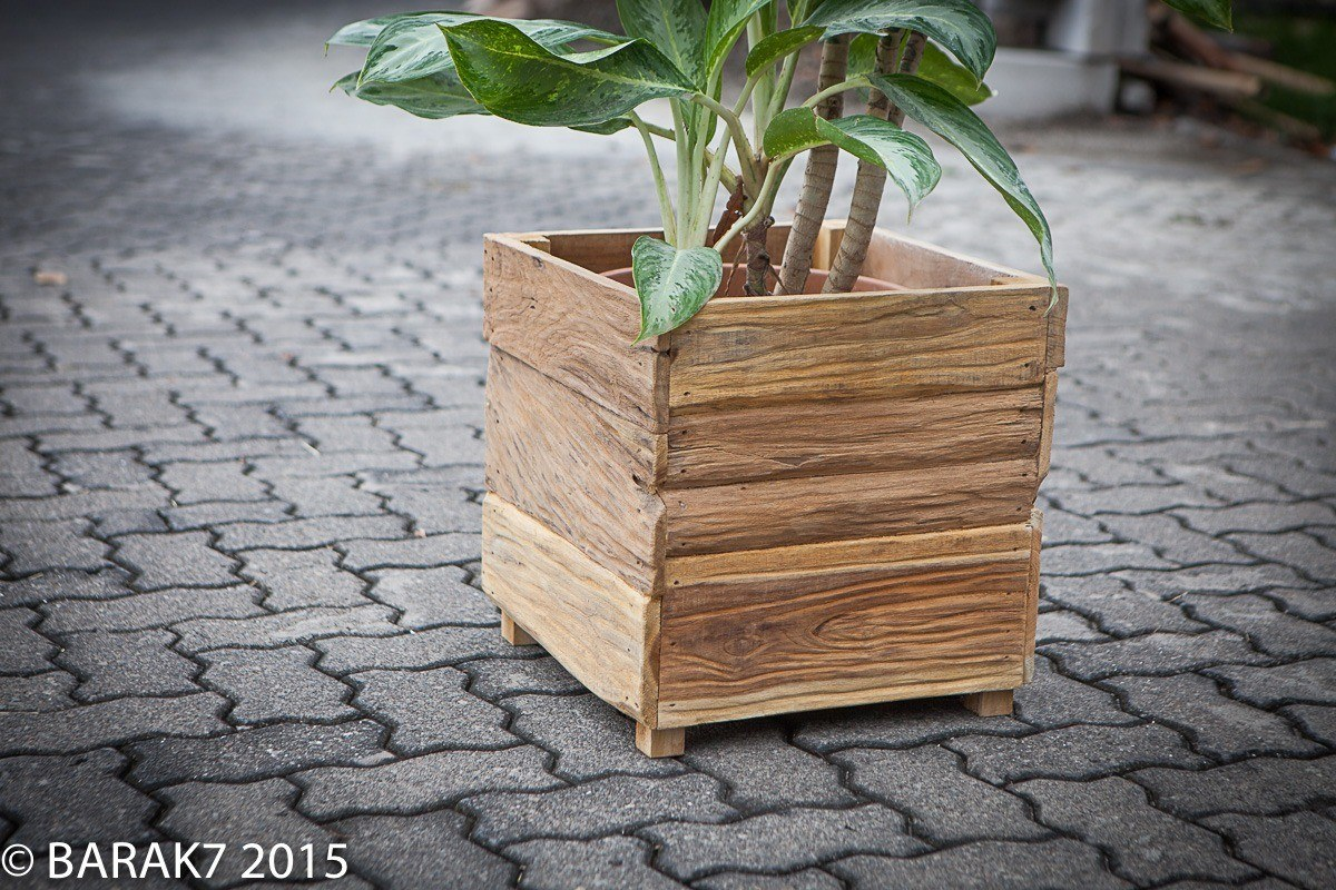 Flower pot botany urban jungle in recycled teak wood - 5